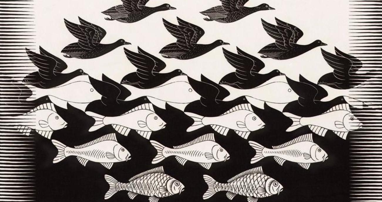 Zomerfilmhuis: Escher: Het Oneindige Zoeken